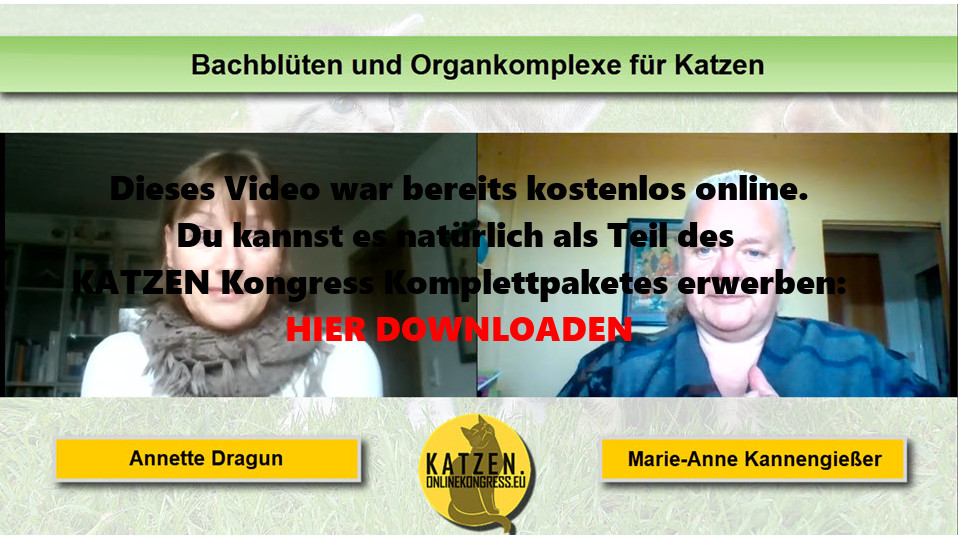 Annette Dragun